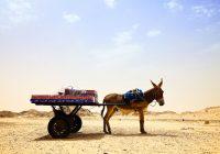 Nouadibou, Mauritania