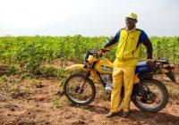 Uíge - Northern Angola