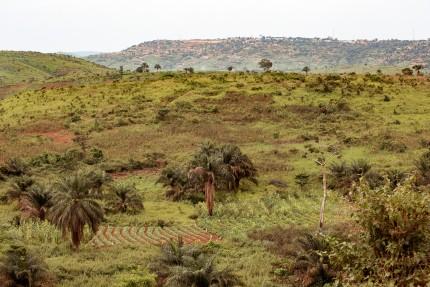 mbanzakongo-1